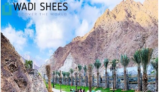 Welcome to Wadi Shees & Hatta Wadi Hub Tour We are one of the superlative services contributors all ...