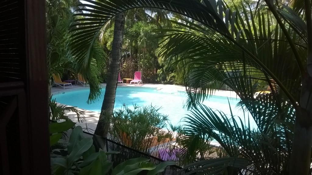Pour vos prochaines vacances en Guadeloupe , choisissez notre hôtel http://www.hotels-guadeloupe.org...
