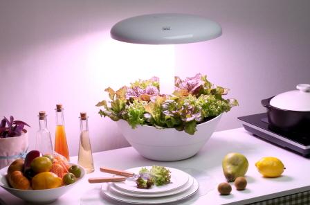[PARPOT] 'LED light for plants' decoration