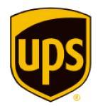 UPS LOGISTICS GROUP SAS