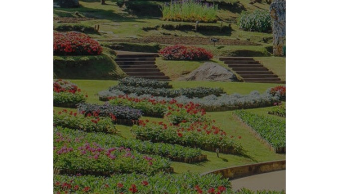 With over 100 years of combined experience in commercial landscaping services, our established famil...