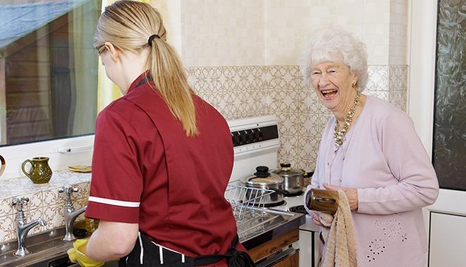 FR Services propose différentes offres de services à la personne : - Aide au domicile : Ménage, net...