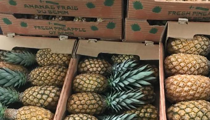 Bonjour, Basé en France , nous disposons de plusieurs hectares d'ananas Pain de sucre, de la cayenne...