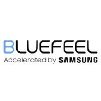 Bluefeel Corp