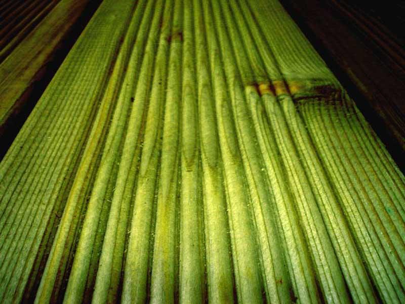 High pressure impregnated wood