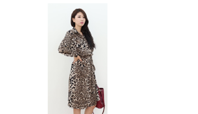 LEOPARD PATTERN DRESS