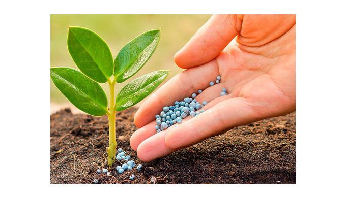 Засоби захисту рослин: види та дія