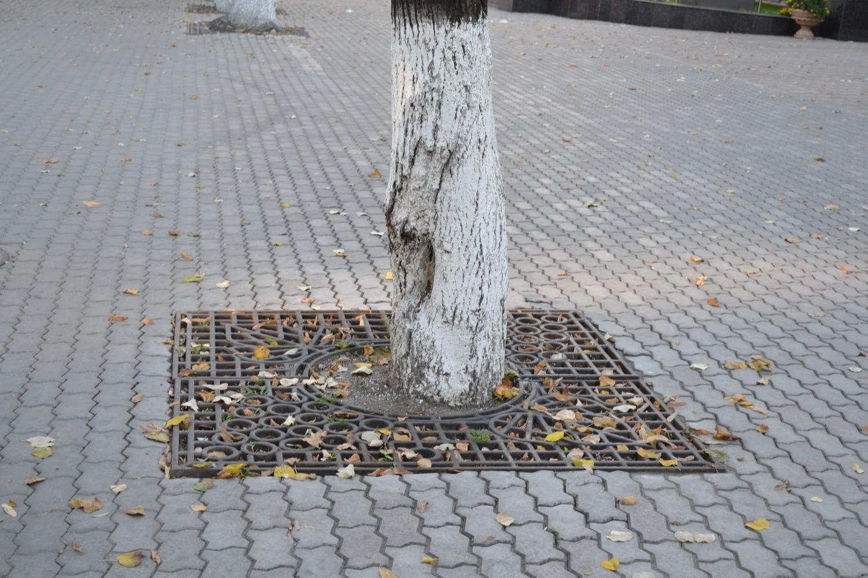 Grilaj decorativ pentru pomi