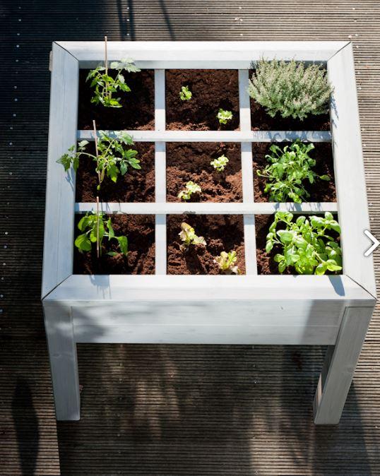 Grâce au Veggie, cultivez des herbes aromatiques sur votre terrasse à une hauteur ergonomique. Au fo...