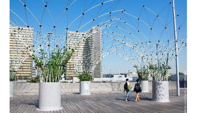 C O R O L L E est une solution de rupture pour rafraichir les villes par le végétal, partout où on n...