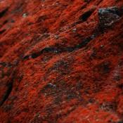 Dovoz železné rudy