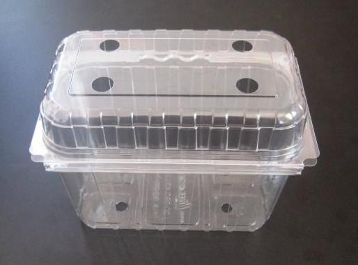Контейнер пластиковый пищевой PET.