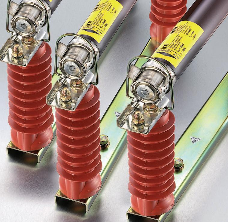 Venez découvrir notre large gamme de fusible moyenne tension ainsi que leurs embases.