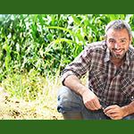 Vers la fécondation intelligenteOCP est un acteur majeur sur le marché mondial de l'agriculture. Sa ...