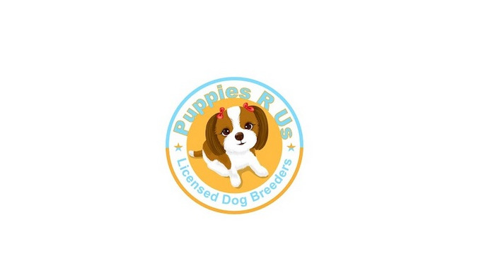 We Are Passionate About Dogs. Puppies R Us are a family run, fully licensed dog breeding business ba...