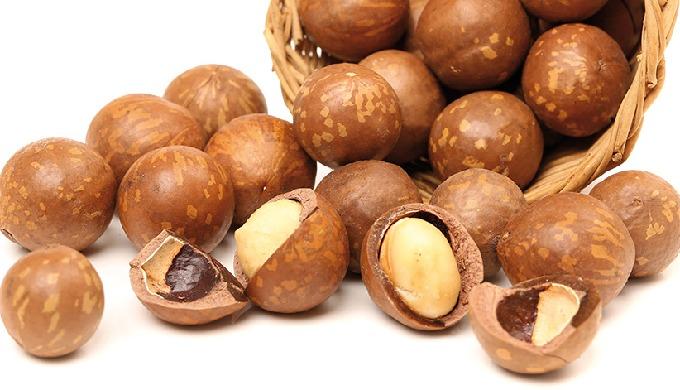 """Die Macadamia-Nuss – besonders wertvoll für eine bewusste Ernährung. Macadamias – auch """"Königin der ..."""