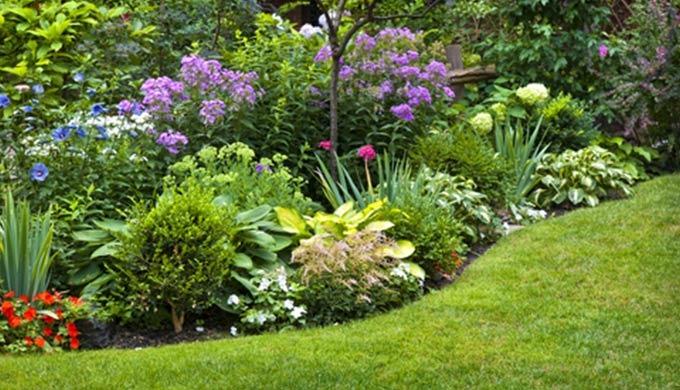 Création, aménagement et entretien des espaces verts, pour particuliers ou communes . Nous mettons n...