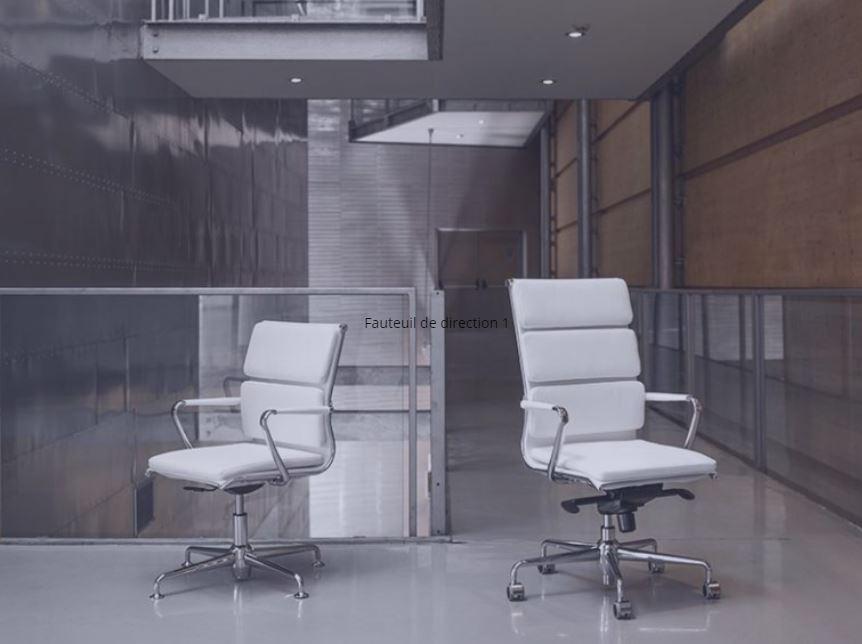 Fauteuils de direction de WSD sont ergonomiques, dynamiques, sophistiqués, classiques… Chaque fauteu...