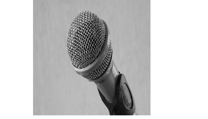 Acquérir les notions nécessaires à une prise de parole efficiente et rassurée en public : Adopter un...