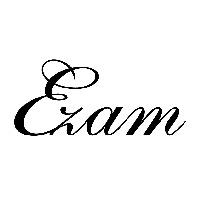 EZAM CORP