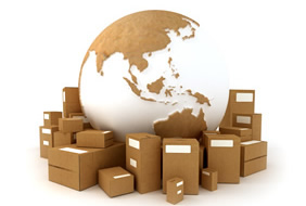 Expert in Supply/Demand Chain Management