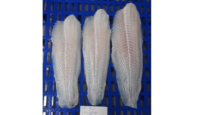 Pangasius fillet, well-trimmed Specifications: - skinless, boneless, red meat off, belly off, fat of...