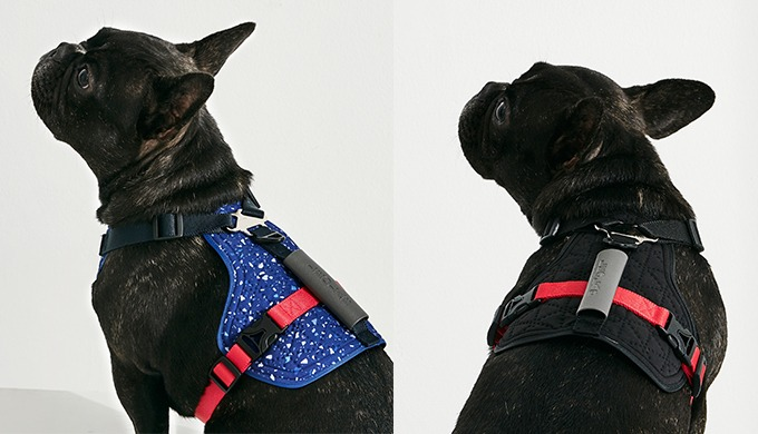 [LEOLAB] Hydro Cooling Harness for pet l prevent heat diseases