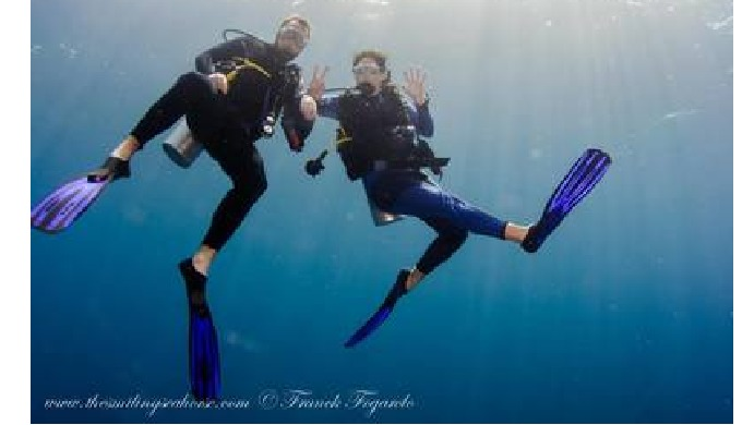 Thailand's best Dive weekend: Surin islands and Richelieu Rock... Thailand still counts some of the ...