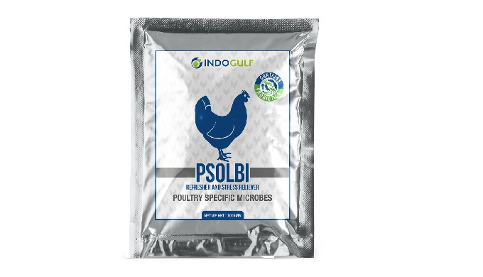 Psolbi (L.Casei) - Poultry Probiotics