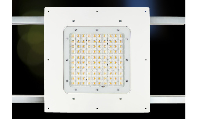 Square Petrol LED