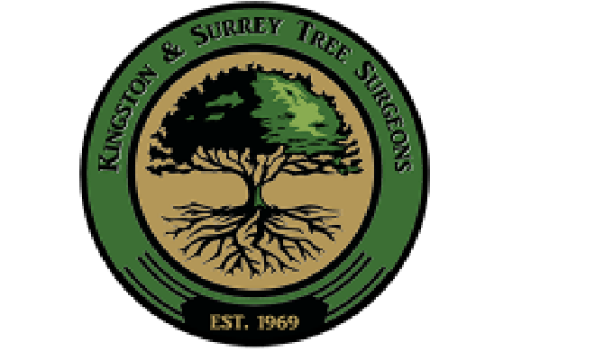 The team at Kingston and Surrey Tree Surgeons does it's best to make things easy for our customers. ...