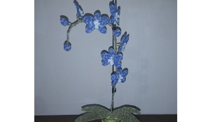 orchidée 6 fleurs et 3 bouton possible autre couleur . si moins ou plus de fleur prix adapter . envo...