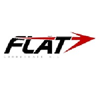 Flat Corporate, FLAT