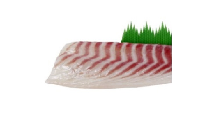 5-2) SEA BREAM FILLETS | PREMIUM QUALITY FISH FILLET