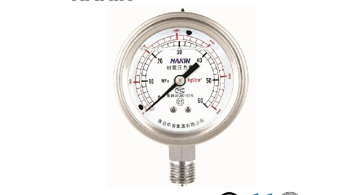 Full Stainless Steel Vibration-Resistant Pressure Gauge Precision Pressure Gauge Diaphragm-Seal Pres...