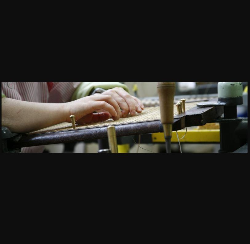 La Fédération des Aveugles Alsace Lorraine Grand Est propose plusieurs métiers adaptés au handicap v...