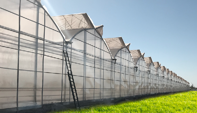Professional Greenhouse Systems