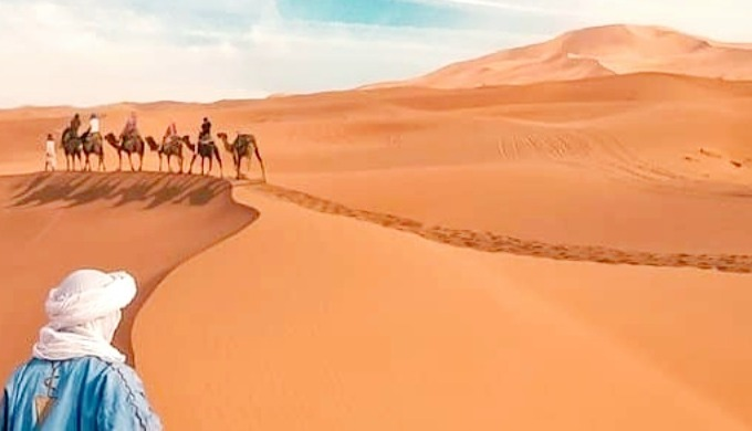 SAHARA HOLIDAY TOURS,Provide the unforgettable offers for Camel Trek and Overnight in the Desert Cam...