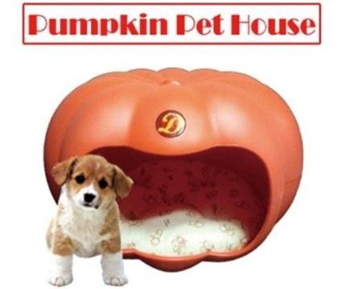 Pumpkin Pet House