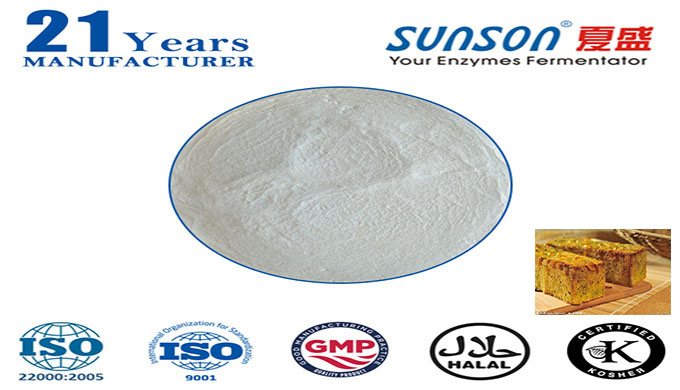 Lipase for flour and baking processing--Sunson SBE-02Li