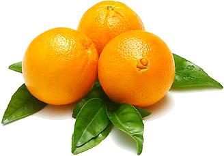 برتقال مصرى ذو مواصفات وجودة ممتازة التعبئة والتغليف حسب الطلب