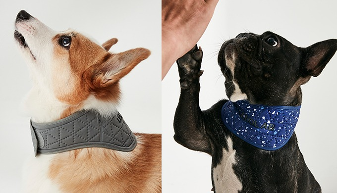 [LEOLAB] Hydro Cooling Neck Band for pet l cooling neck band
