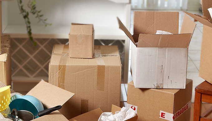 We are here to provide cargo services,loading and unloading services, car transportation services, h...
