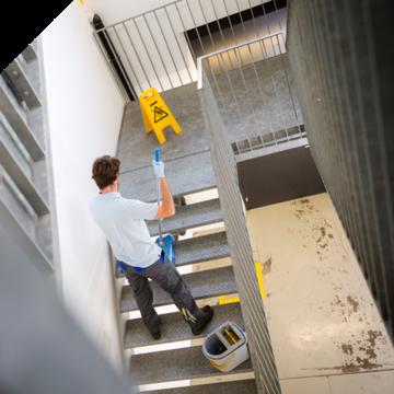 Von Anfang an sauber: Wohnungen, Mehrfamilienhäuser, Industriegebäude, Sporthallen Beleuchtungen Dec...