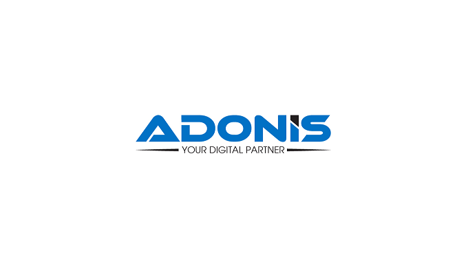 ADONIS (5 Pôles de compétence)  : Transformation Digitale –  Développements IT – Infra & Prod – Progiciels - BI Décisionnel