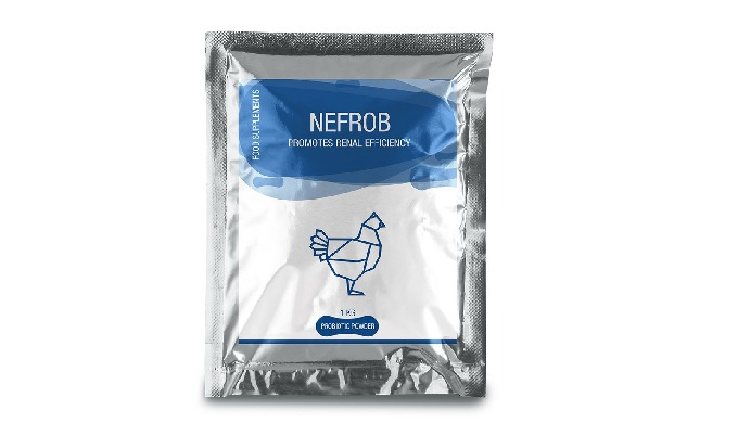 NEFROB Nefrob is a promotes renal efficiency which prevents gout during renal inefficiency and durin...