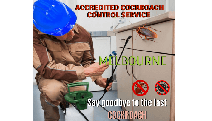 Are you worried about the extensive range of cockroaches at your living place? Call Marks Cockroach ...