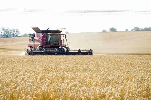 Obilí, rostlinná výroba Agra Horní Dunajovice a.s. hospodaří na celkové výměře 3.000 ha zemědělské p...