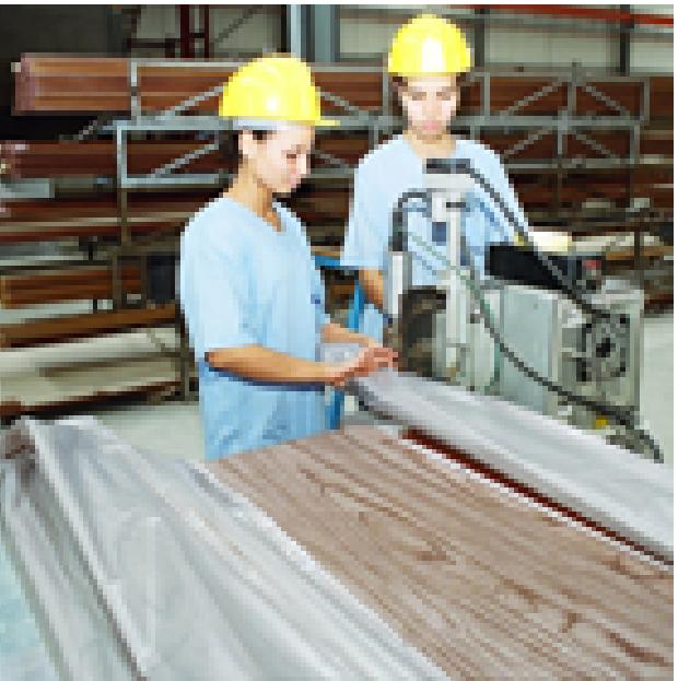 Le thermolaquage consiste lui en l'application d'une poudre polyester colorée qui se transforme aprè...