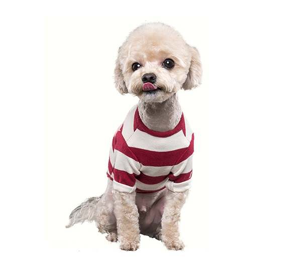 This is a very flexible 100% cotton product. It is very comfortable. It suits all pet body types wel...